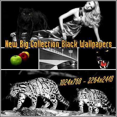 New Big Collection Black Wallpapers