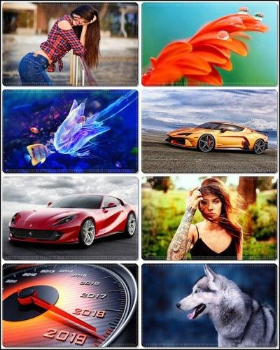 Wallpapers Mixed Pack 74
